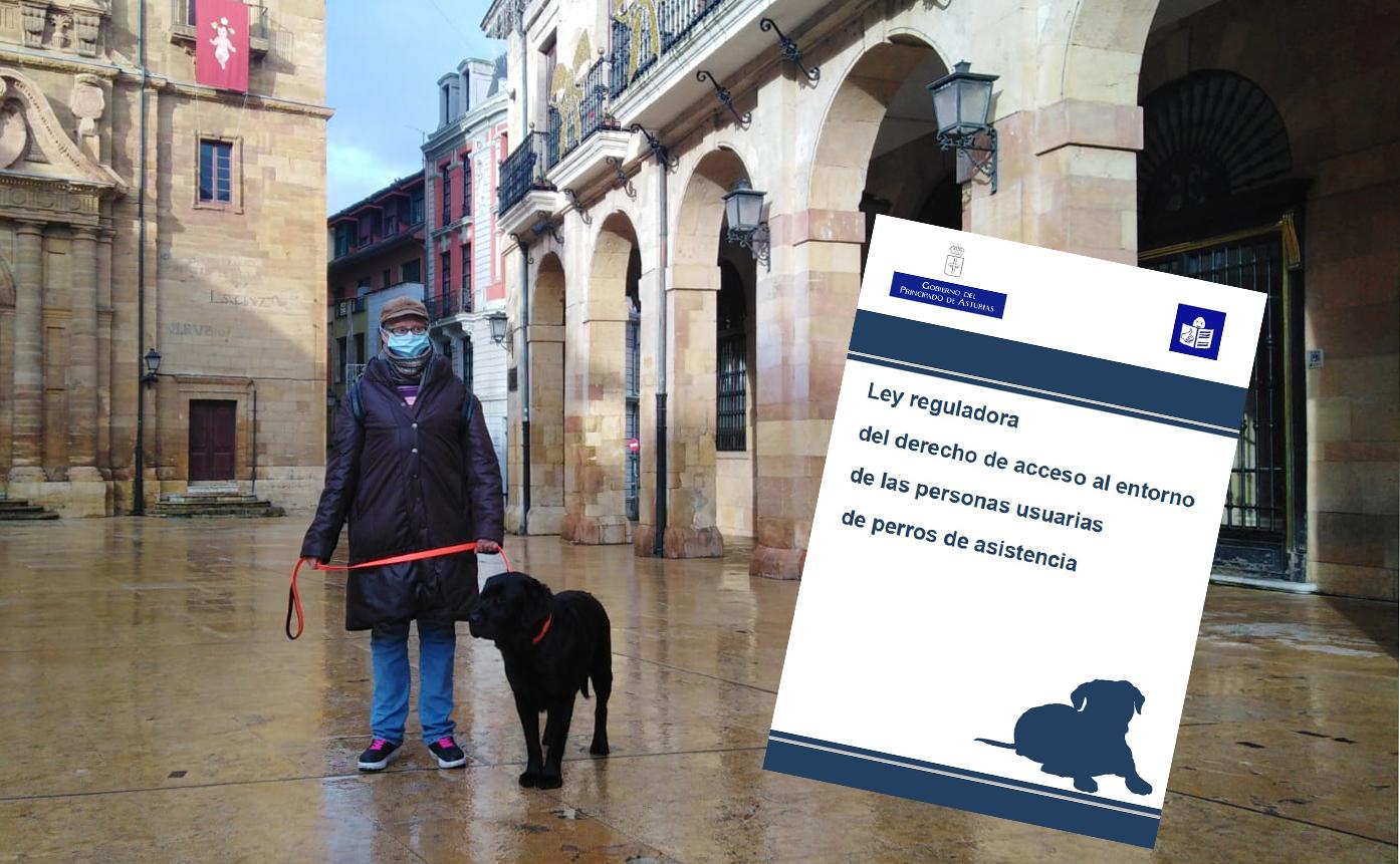 Plena inclusión Asturias adapta la primera Ley asturiana en lectura fácil